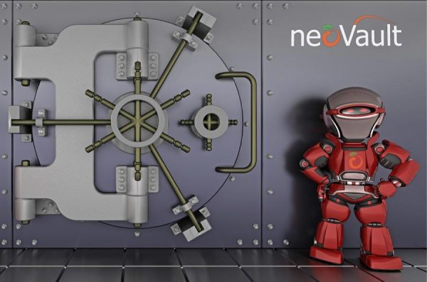 NeoVault Offshore Backup Solution (Per Month)